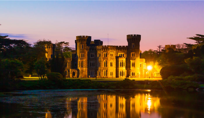 Johnstown Castle by dawn